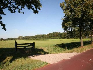 """""""Fraai uitzicht over weiland en Het Hoevelakense Bos tussen Westerdorpstraat en Nijkerkerstraat"""